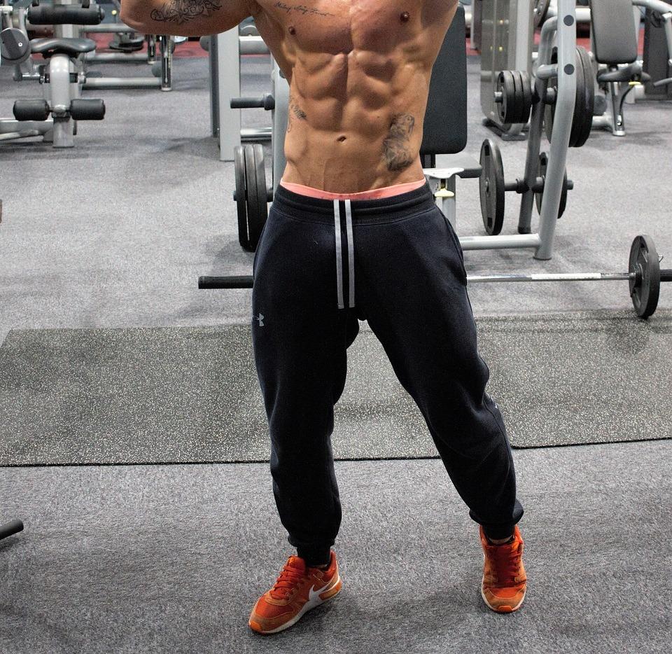 Músculos trabajados por el revestimiento